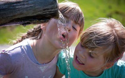90% aller Wasserfilter verkeimen.